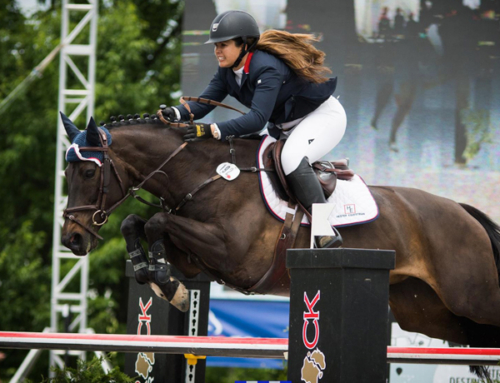 Lauren Hester Takes Hester Equestrian to New Heights in 2017