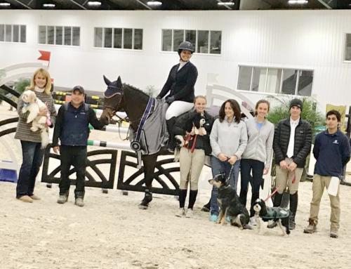 World Equestrian Center #2