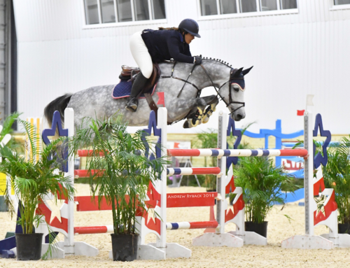 World Equestrian Center Fall Series and Invitational